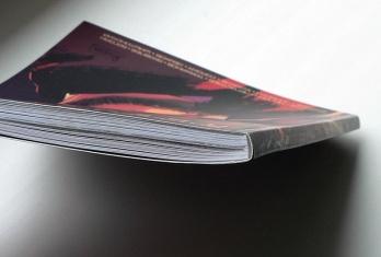 Горелово 002 bind