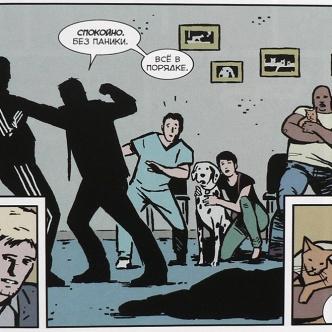 Hawkeye 012 iron fist (frag)